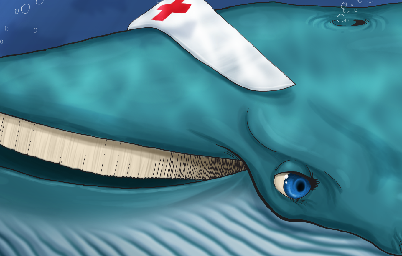 Detalhe baleia by Danilo Aroeira